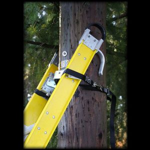 Ladder Safety Strap Black