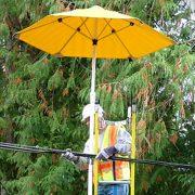 Non-Conductive Umbrella