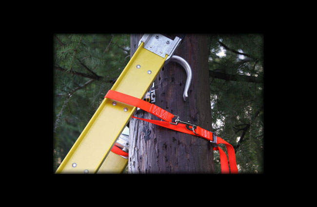 Orange Ladder Safety Strap